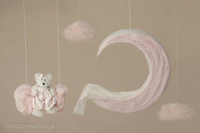 lune ours rose